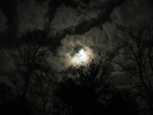 [moon-and-sky1.jpg]