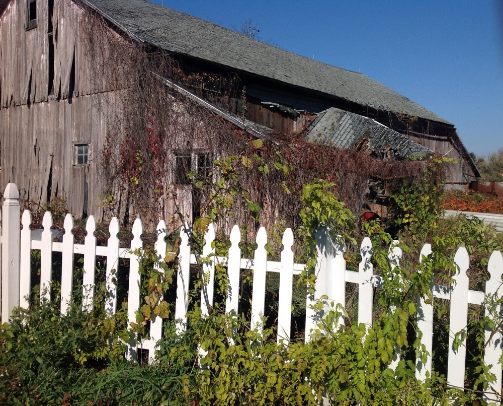 Friday Fictioneers - Swing Seat and Picket Fence (1/2)
