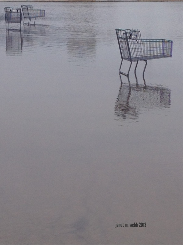 Shopping trolleys on a flooded plain