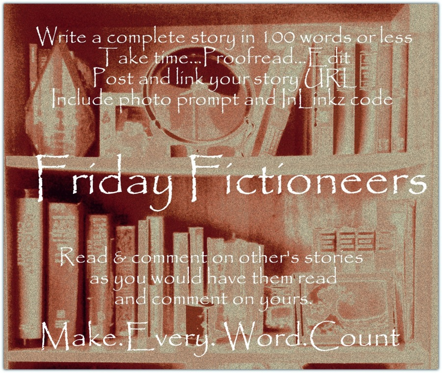 Friday Fictioneers Bookshelf