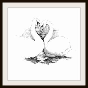 Framed Swans