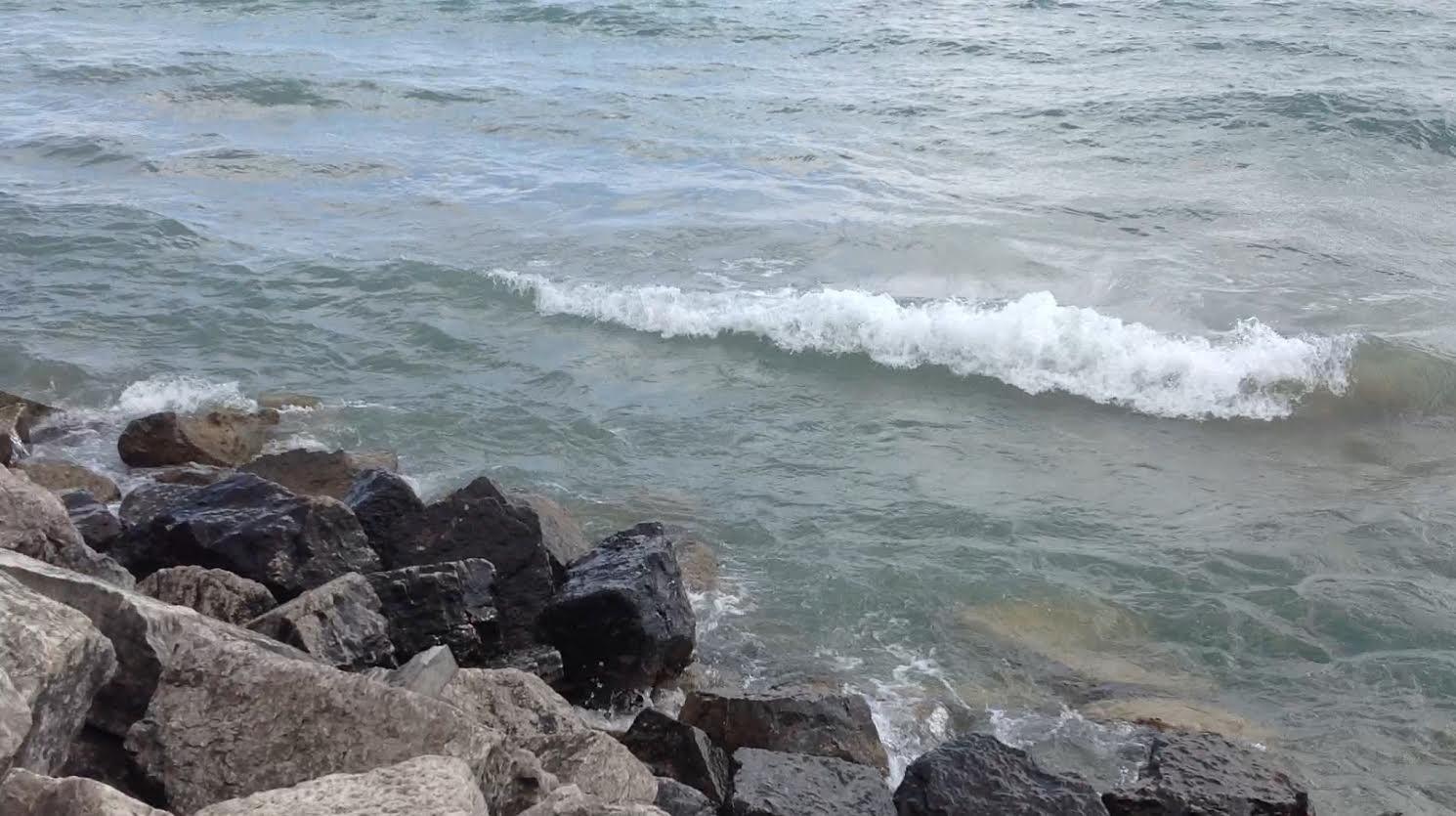 https://rochellewisofffields.files.wordpress.com/2016/05/waves.jpg