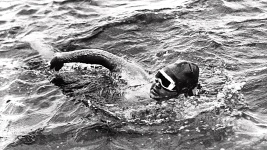 Ederle Swim