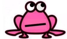 Pink Froggie