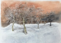 Original Painting 11 x 14 $300.00 Unframed
