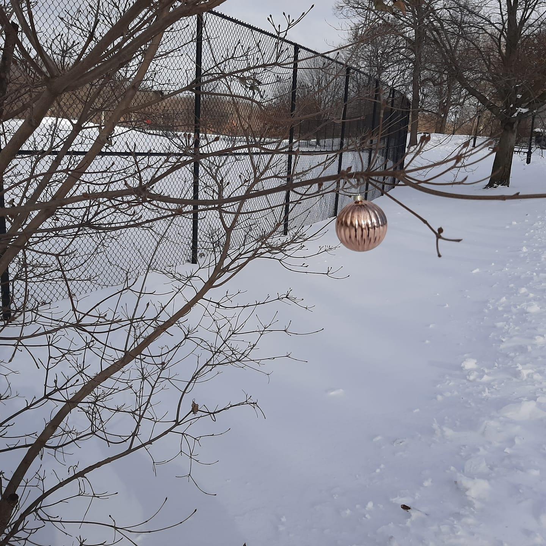 https://rochellewisofffields.files.wordpress.com/2021/07/naamas-winter-pic.jpg